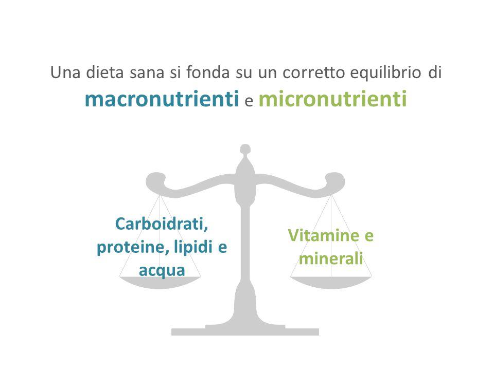 Carboidrati, proteine, lipidi e acqua
