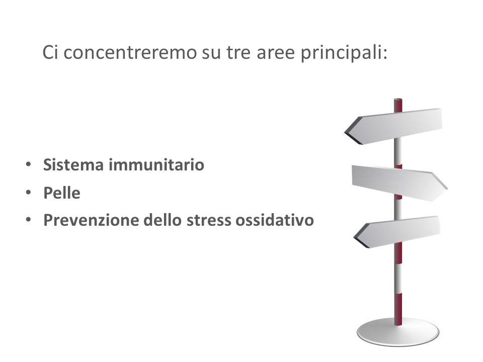 Ci concentreremo su tre aree principali: