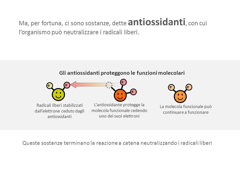 Gli antiossidanti proteggono le funzioni molecolari