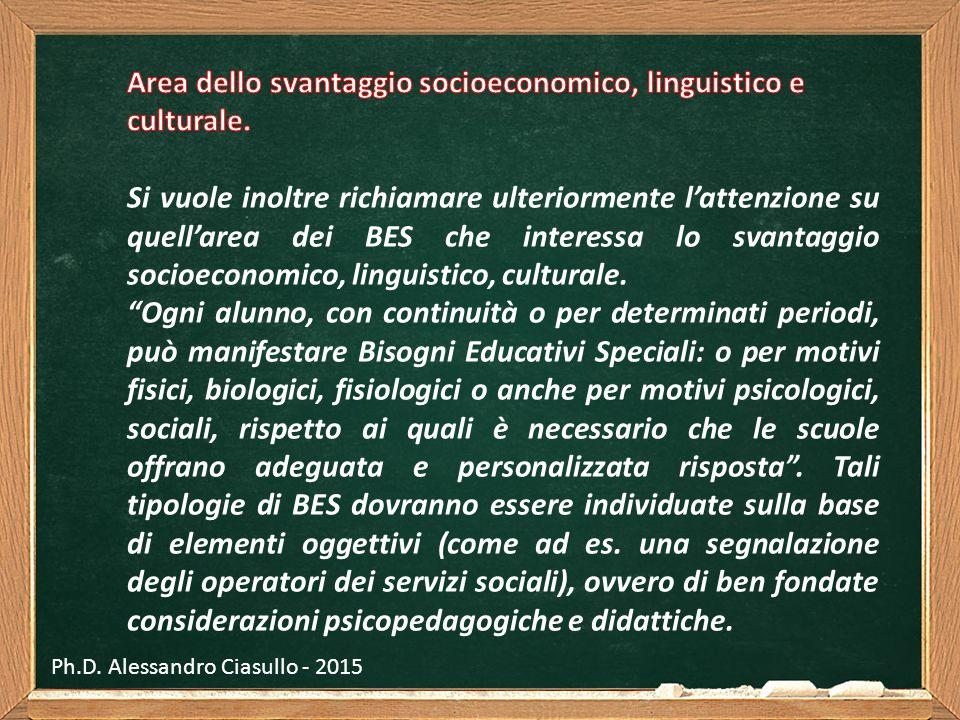 Area dello svantaggio socioeconomico, linguistico e culturale.
