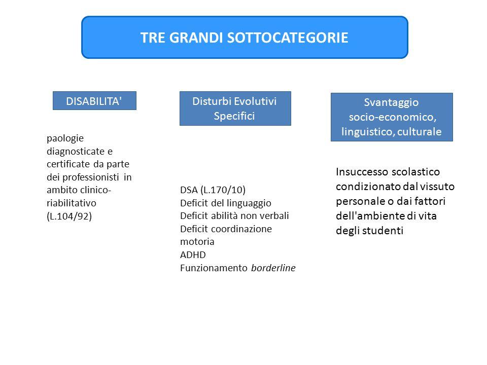 TRE GRANDI SOTTOCATEGORIE