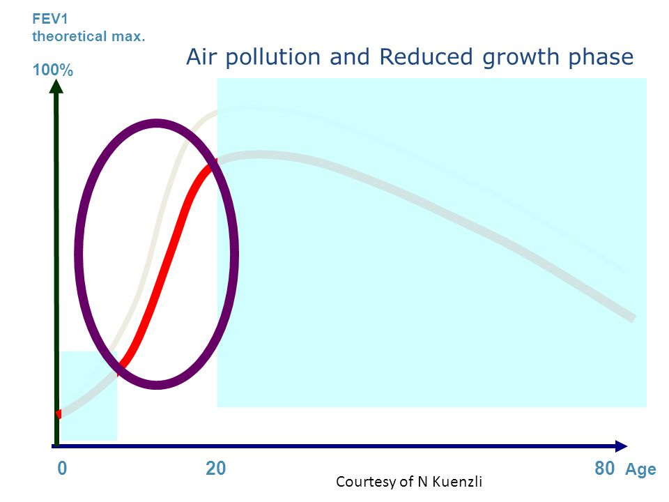 Air pollution and Reduced growth phase