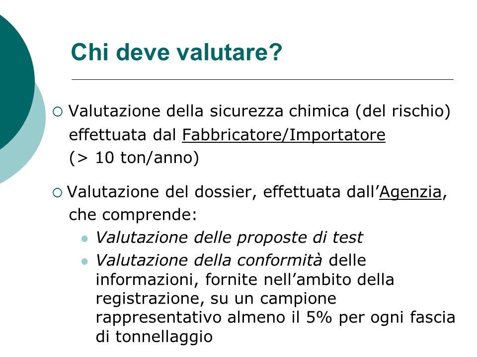 Chi deve valutare Valutazione della sicurezza chimica (del rischio)