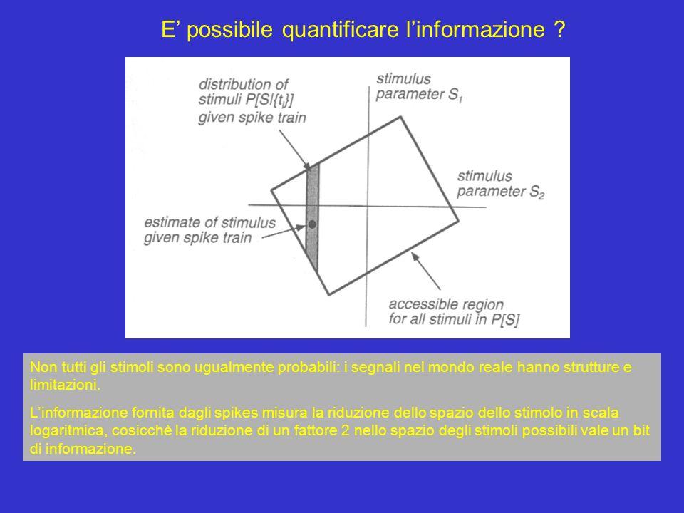 E' possibile quantificare l'informazione