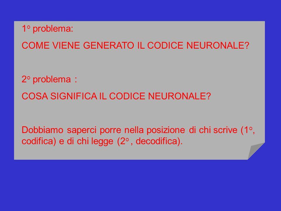 1o problema: COME VIENE GENERATO IL CODICE NEURONALE 2o problema : COSA SIGNIFICA IL CODICE NEURONALE