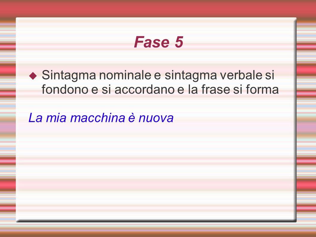 Fase 5 Sintagma nominale e sintagma verbale si fondono e si accordano e la frase si forma.
