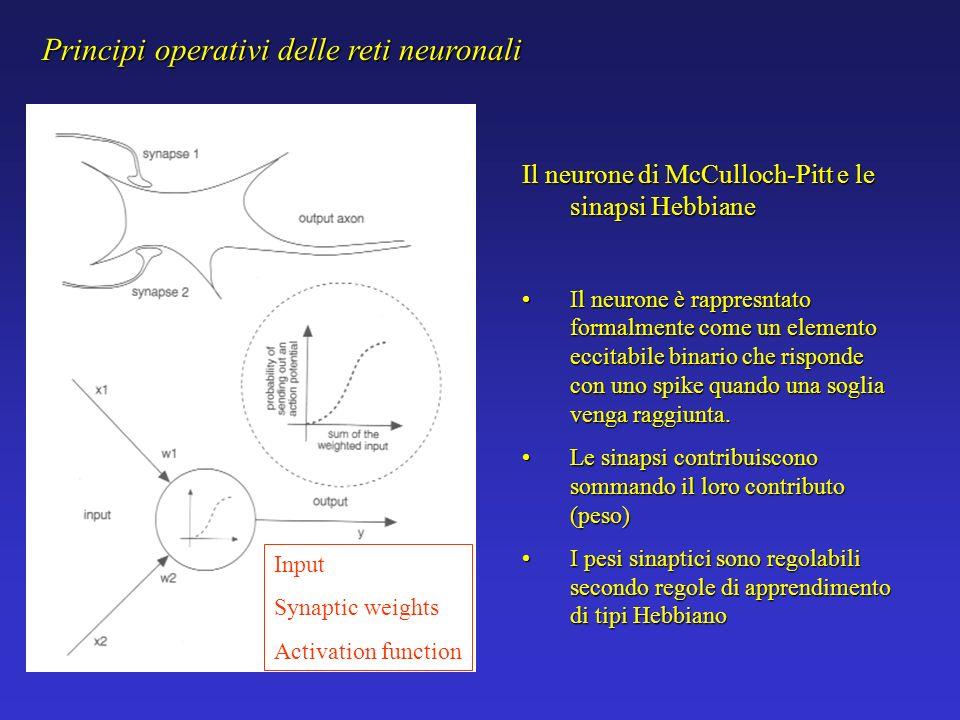 Principi operativi delle reti neuronali