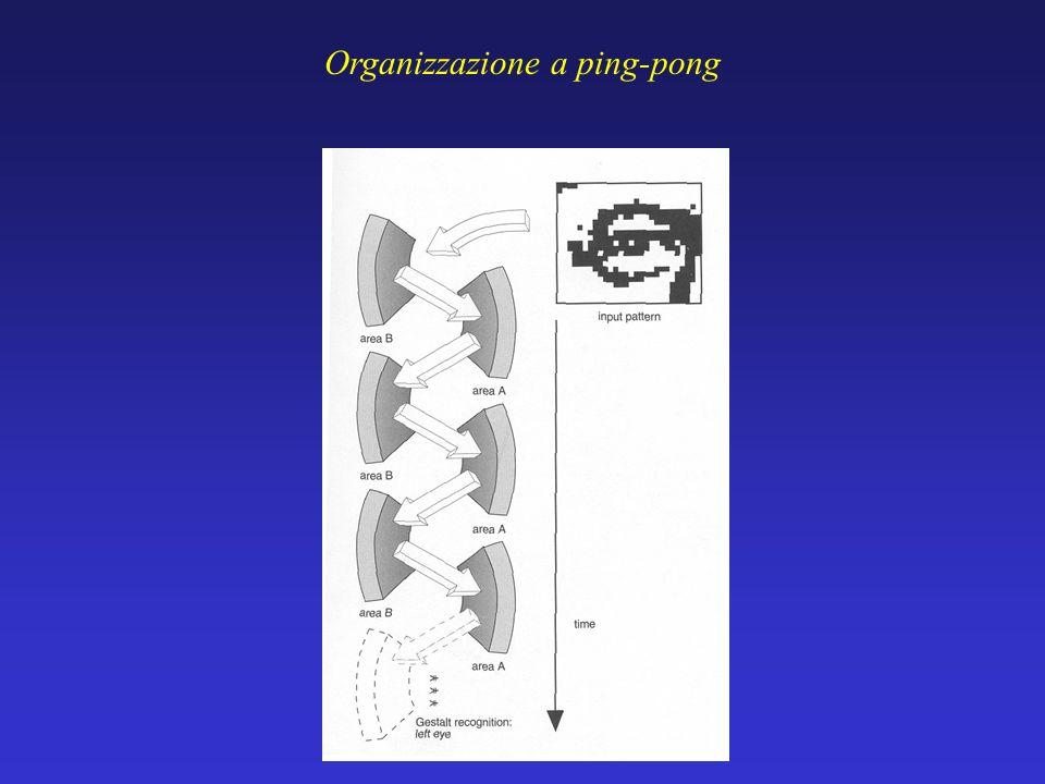 Organizzazione a ping-pong