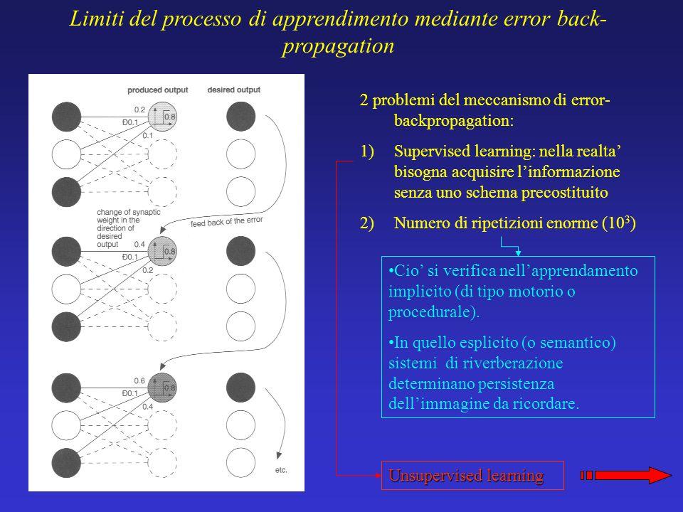 Limiti del processo di apprendimento mediante error back-propagation