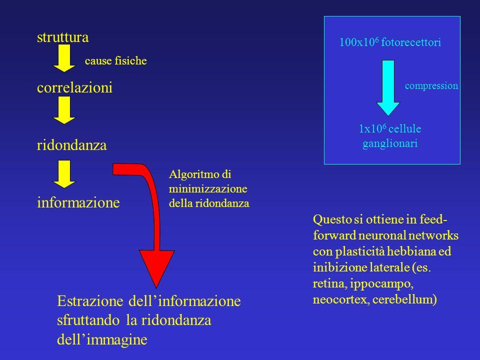 Estrazione dell'informazione sfruttando la ridondanza dell'immagine
