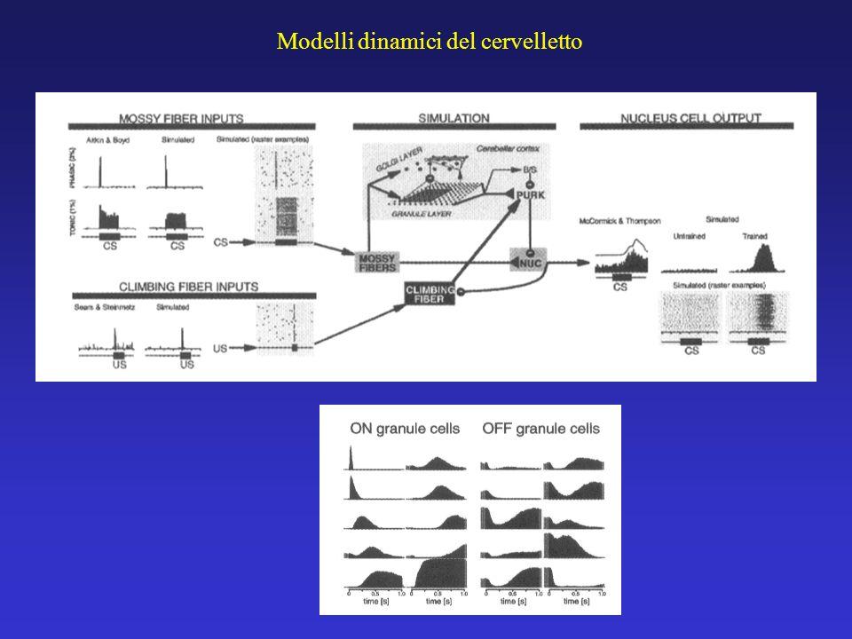 Modelli dinamici del cervelletto