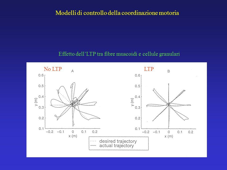 Modelli di controllo della coordinazione motoria
