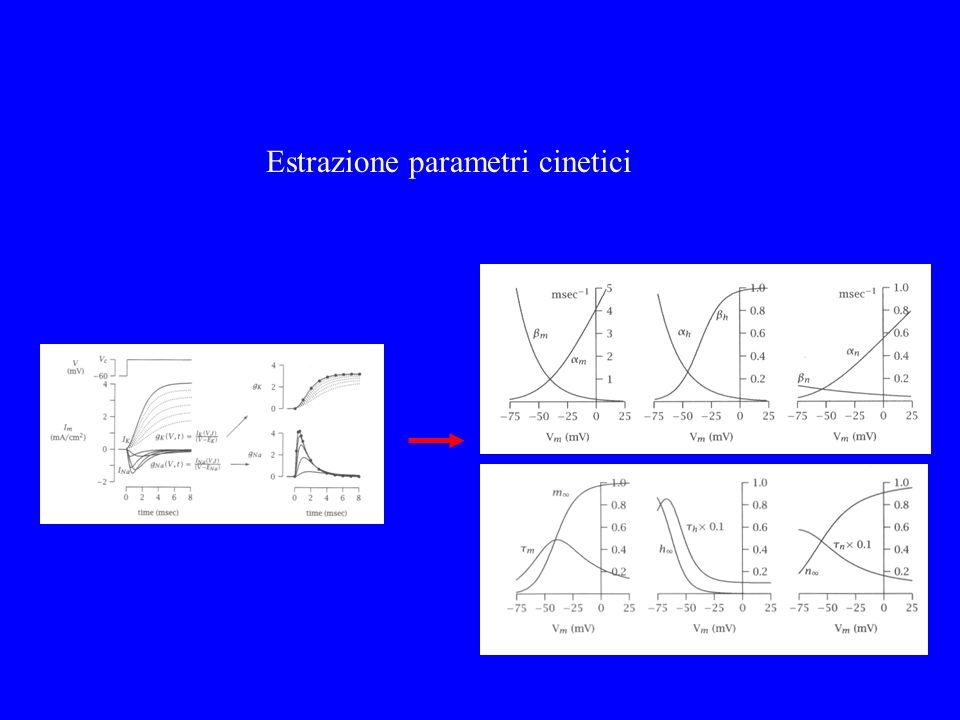 Estrazione parametri cinetici