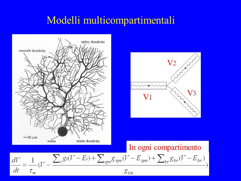 Modelli multicompartimentali