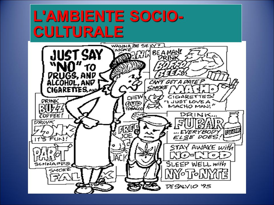 L AMBIENTE SOCIO-CULTURALE