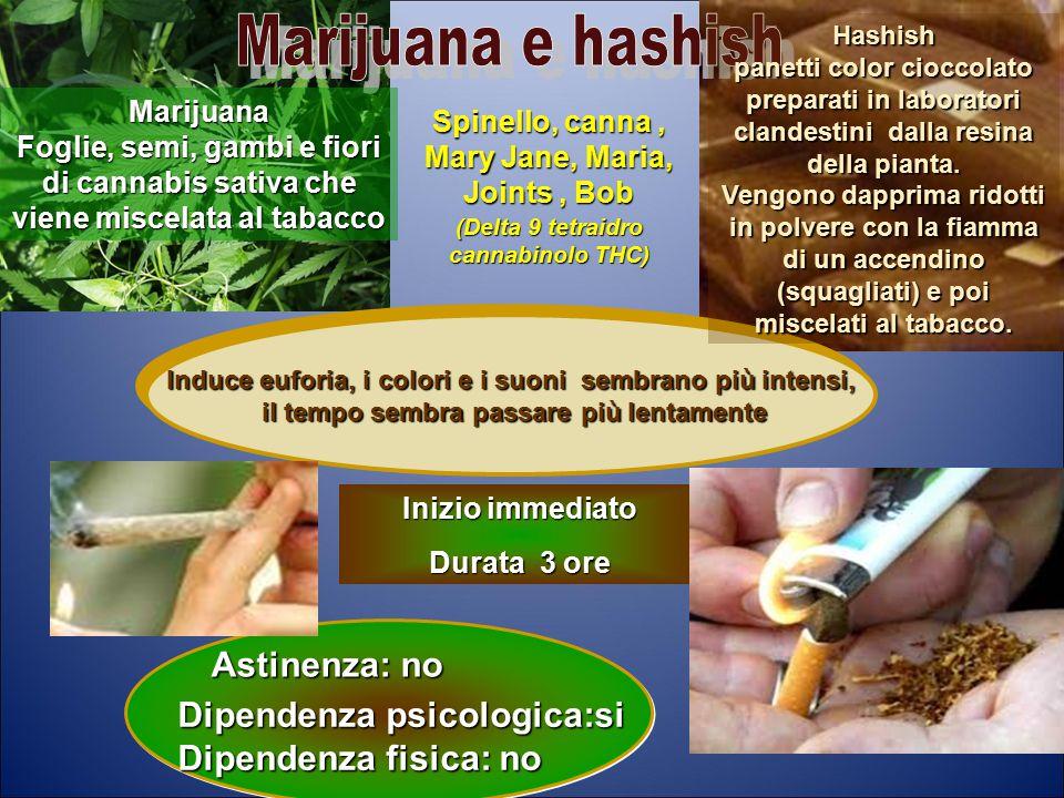 Marijuana e hashish Astinenza: no Dipendenza psicologica:si