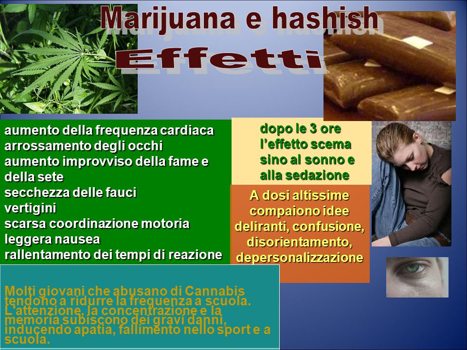 Marijuana e hashish Effetti. aumento della frequenza cardiaca. arrossamento degli occhi. aumento improvviso della fame e della sete.
