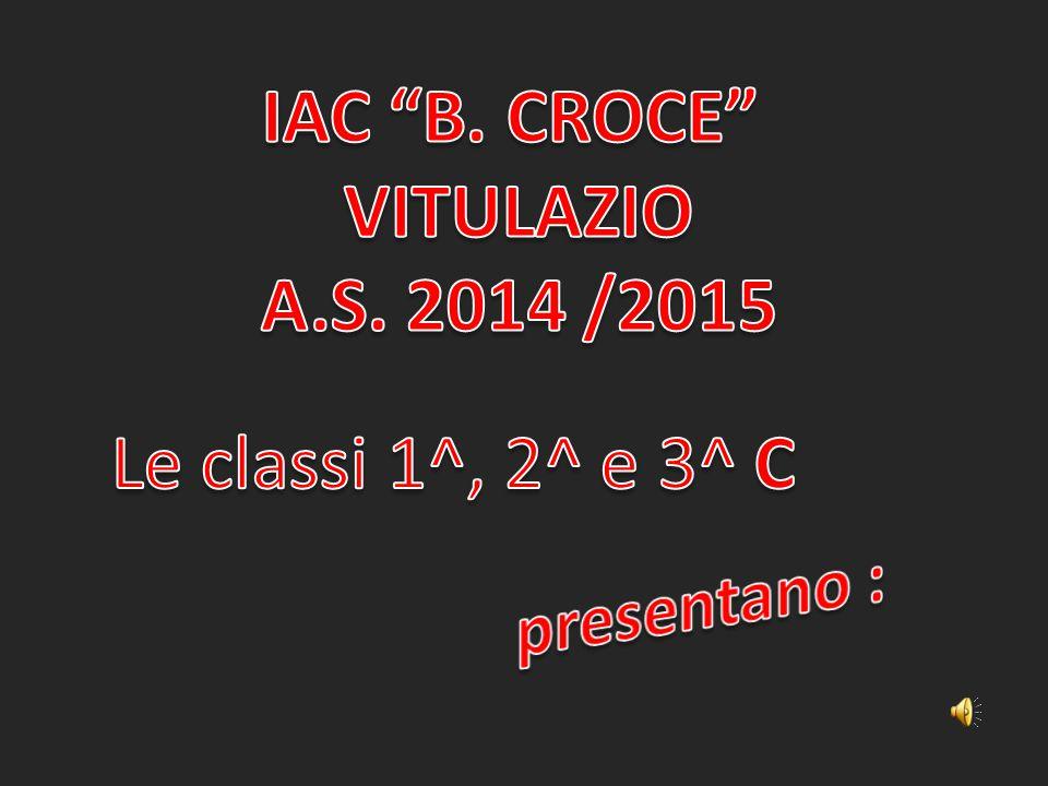 IAC B. CROCE VITULAZIO A.S. 2014 /2015 Le classi 1^, 2^ e 3^ C presentano :