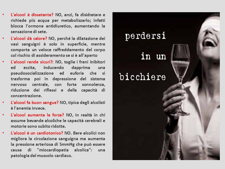 L alcool è dissetante NO, anzi, fa disidratare e richiede più acqua per metabolizzarlo; infatti blocca l ormone antidiuretico, aumentando la sensazione di sete.