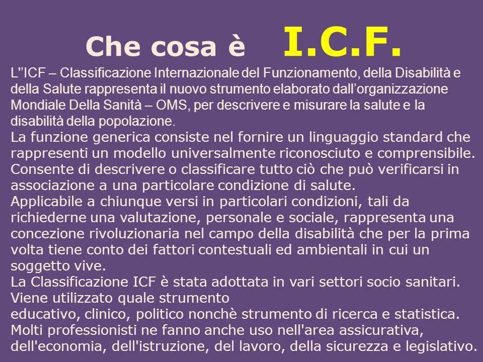 Che cosa è I.C.F.
