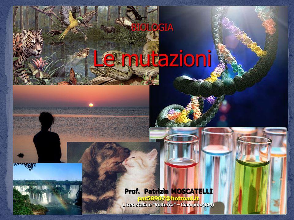 Prof. Patrizia MOSCATELLI Liceo statale Volterra – Ciampino(RM)