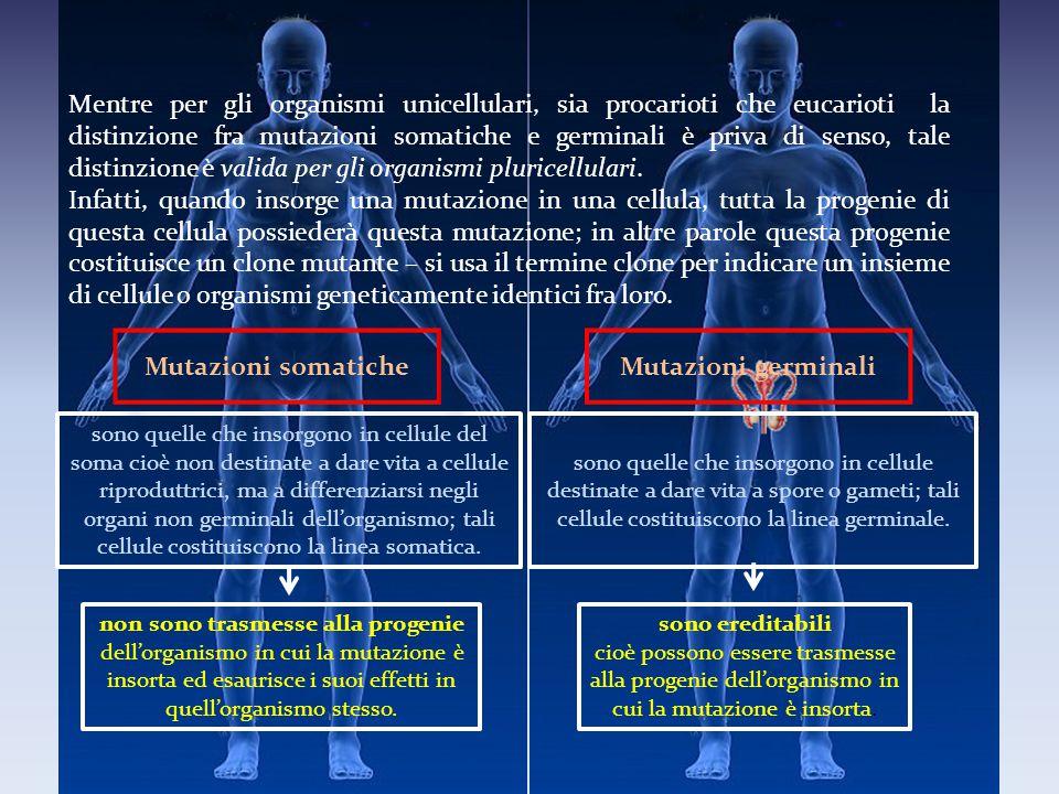 Mutazioni somatiche Mutazioni germinali