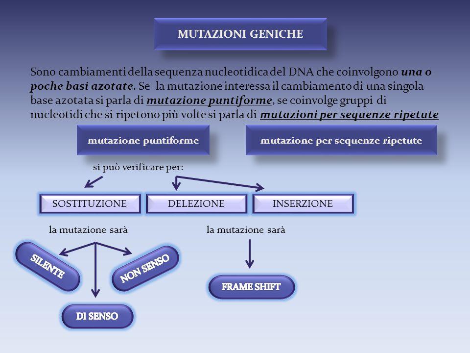 mutazione per sequenze ripetute