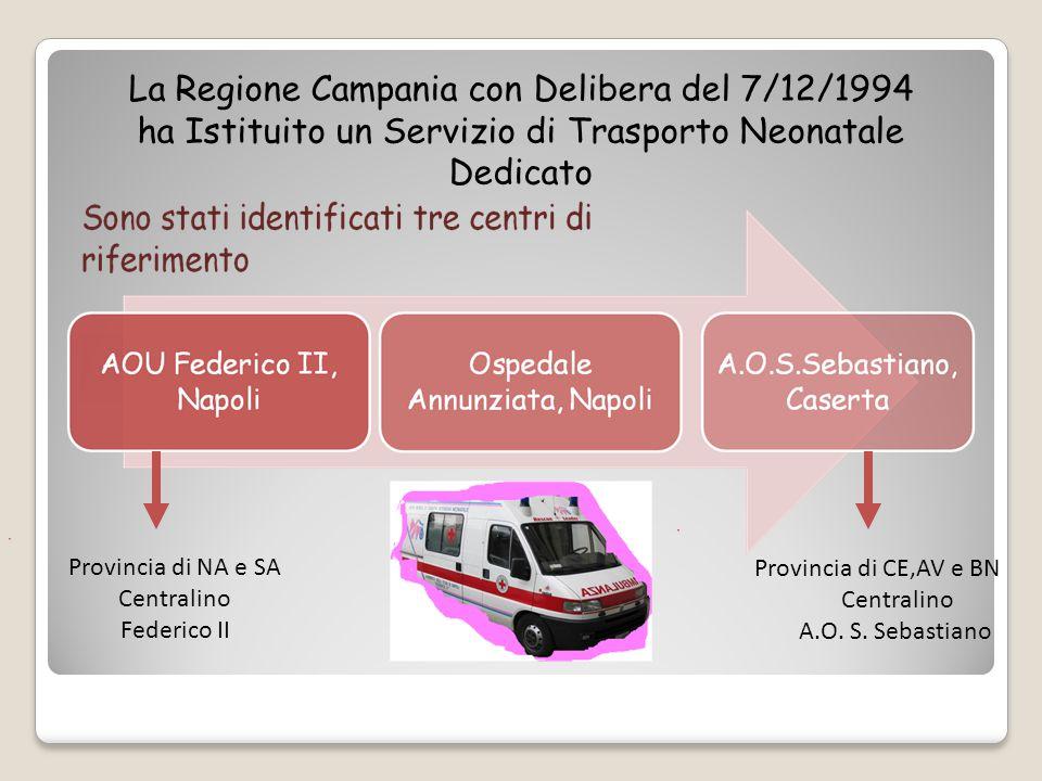 La Regione Campania con Delibera del 7/12/1994