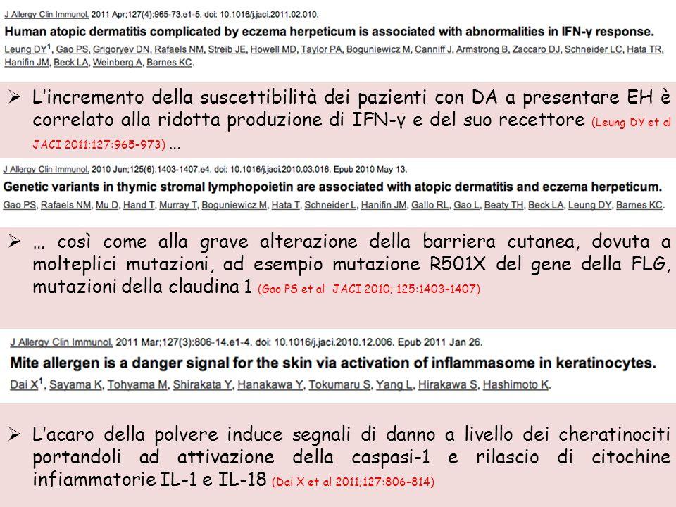 L'incremento della suscettibilità dei pazienti con DA a presentare EH è correlato alla ridotta produzione di IFN-γ e del suo recettore (Leung DY et al JACI 2011;127:965–973) …