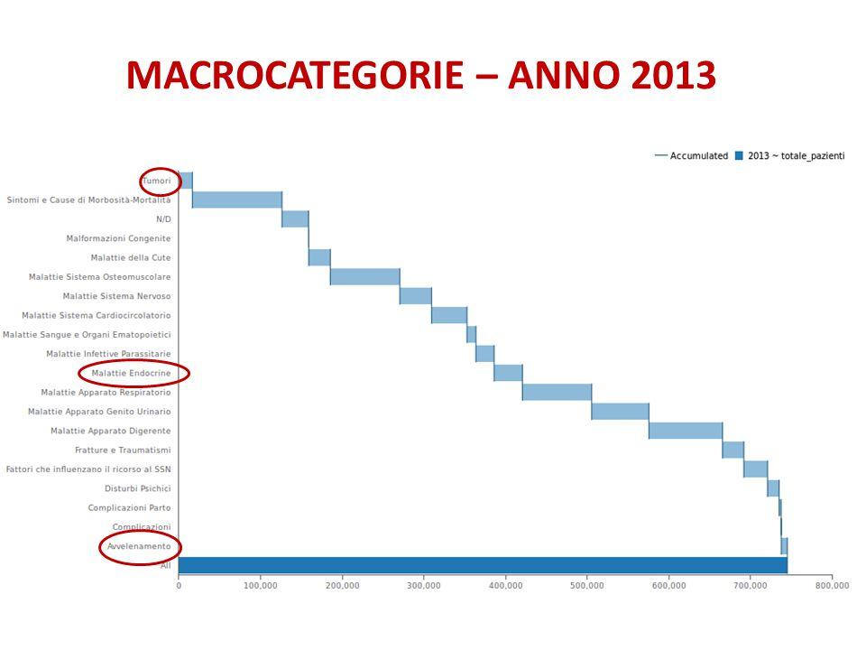 MACROCATEGORIE – ANNO 2013