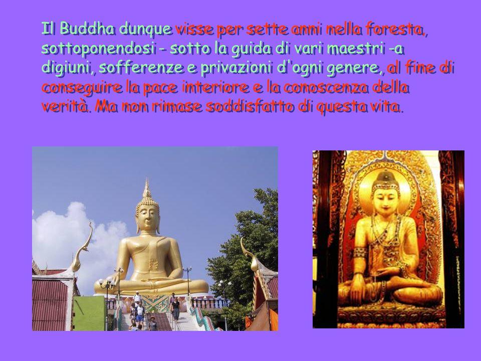 Il Buddha dunque visse per sette anni nella foresta, sottoponendosi - sotto la guida di vari maestri -a digiuni, sofferenze e privazioni d ogni genere, al fine di conseguire la pace interiore e la conoscenza della verità.