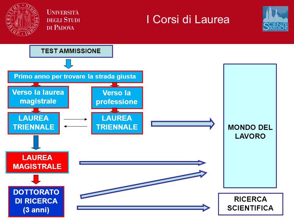 I Corsi di Laurea Verso la laurea magistrale Verso la professione
