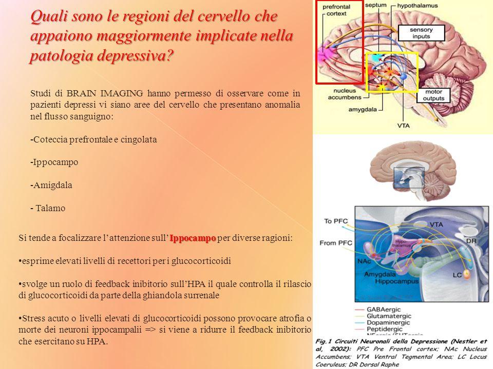 Quali sono le regioni del cervello che appaiono maggiormente implicate nella patologia depressiva