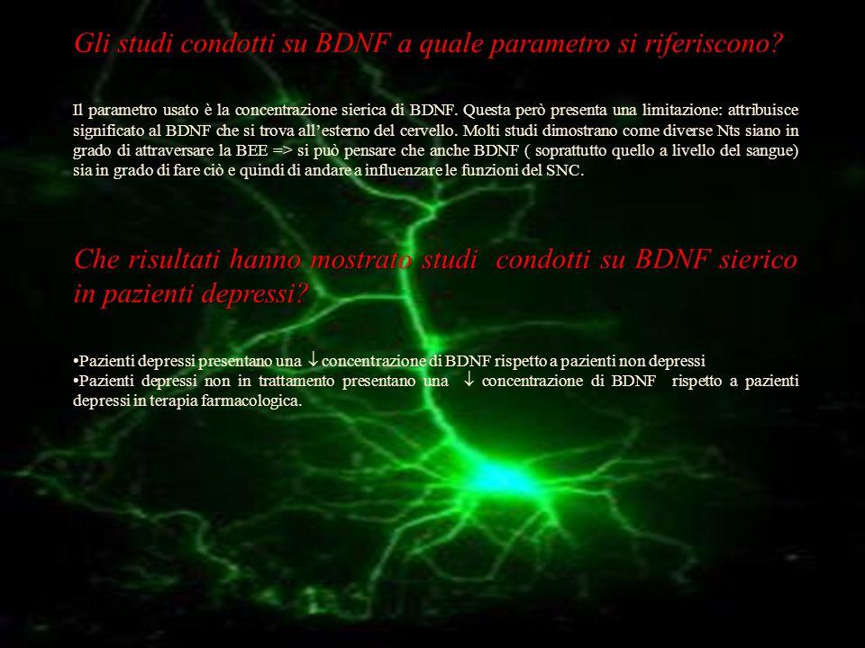 Gli studi condotti su BDNF a quale parametro si riferiscono