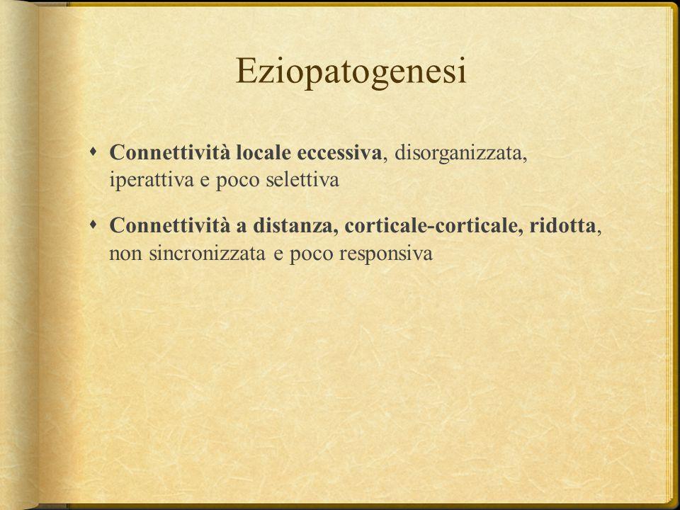 Eziopatogenesi Connettività locale eccessiva, disorganizzata, iperattiva e poco selettiva.