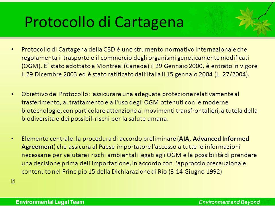 Protocollo di Cartagena