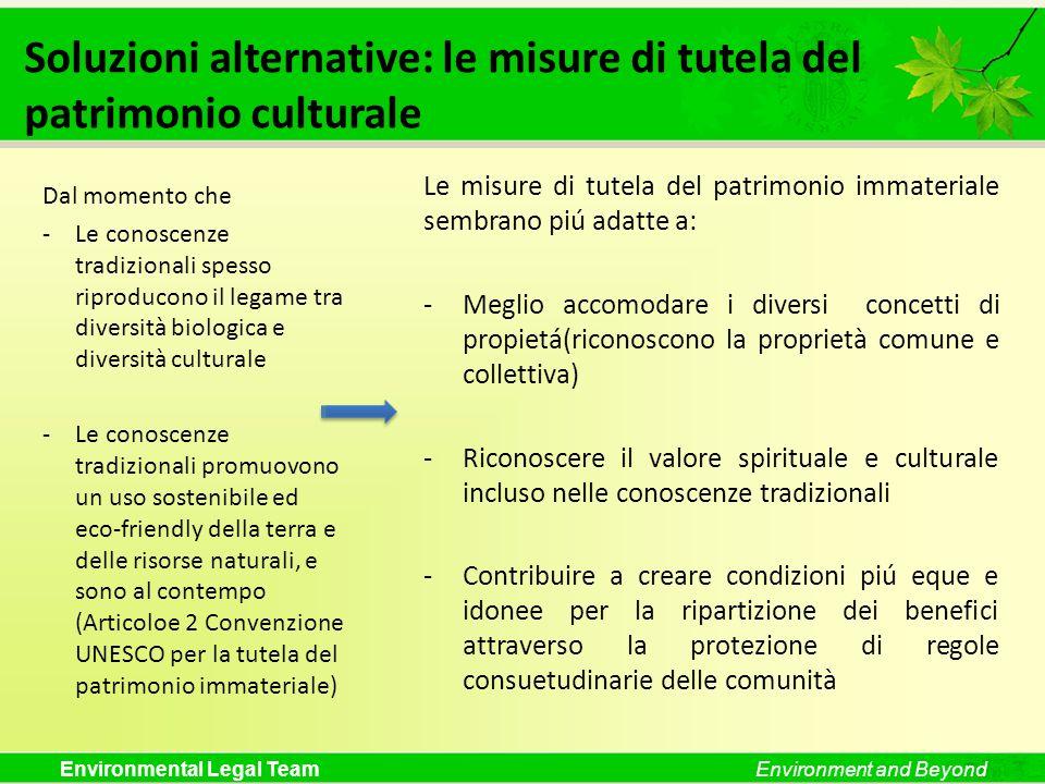 Soluzioni alternative: le misure di tutela del patrimonio culturale