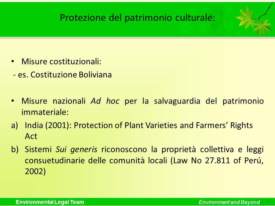 Protezione del patrimonio culturale: