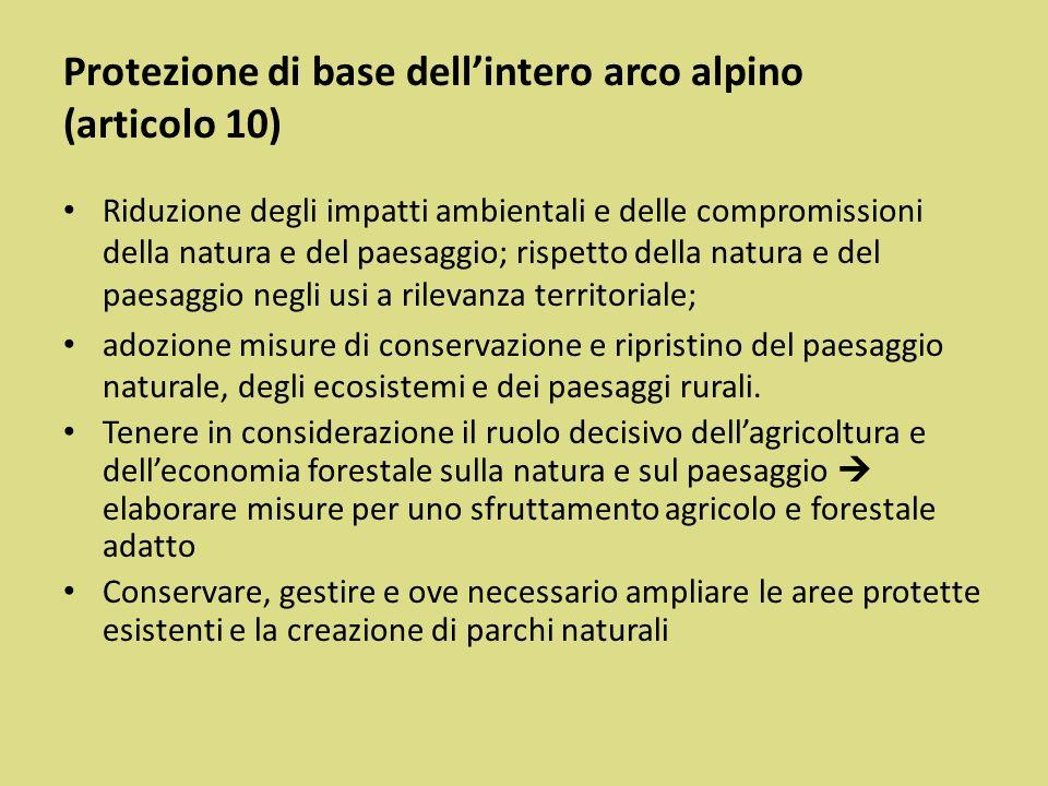 Protezione di base dell'intero arco alpino (articolo 10)