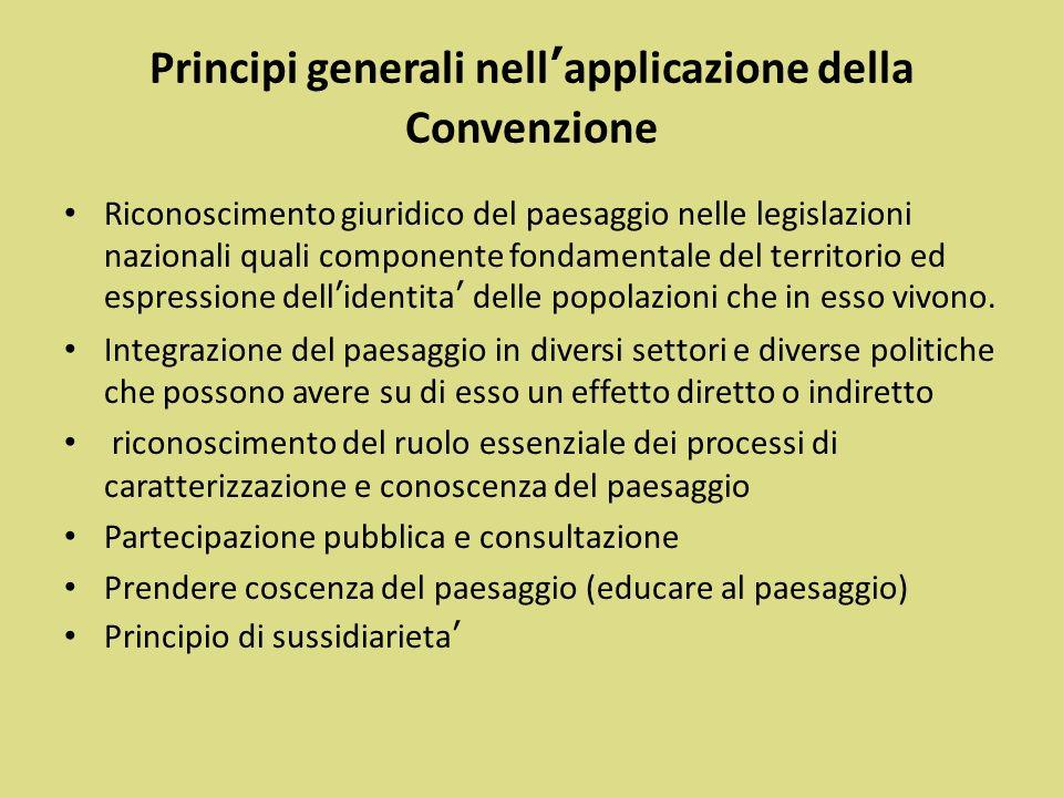 Principi generali nell'applicazione della Convenzione