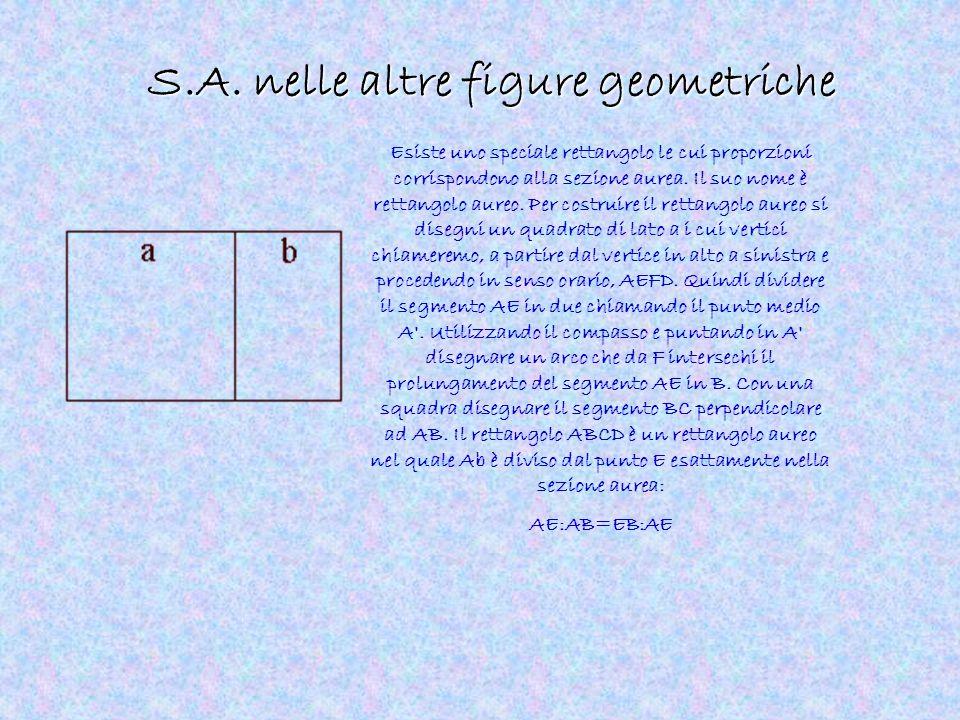 S.A. nelle altre figure geometriche