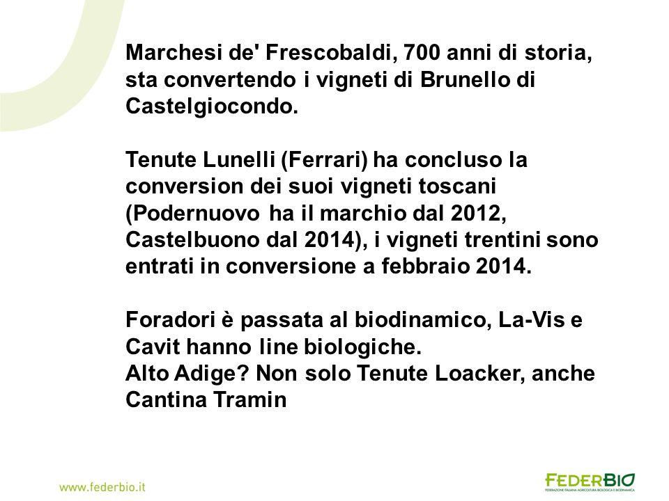 Marchesi de Frescobaldi, 700 anni di storia, sta convertendo i vigneti di Brunello di Castelgiocondo.