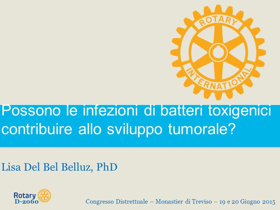 Possono le infezioni di batteri toxigenici contribuire allo sviluppo tumorale