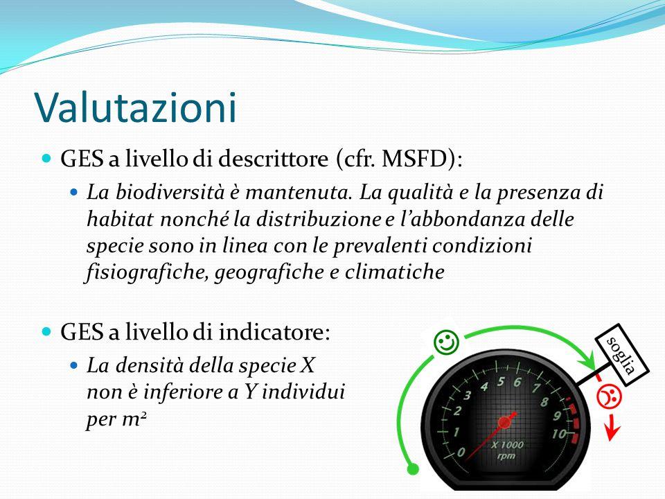 Valutazioni GES a livello di descrittore (cfr. MSFD):