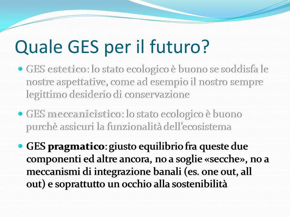 Quale GES per il futuro