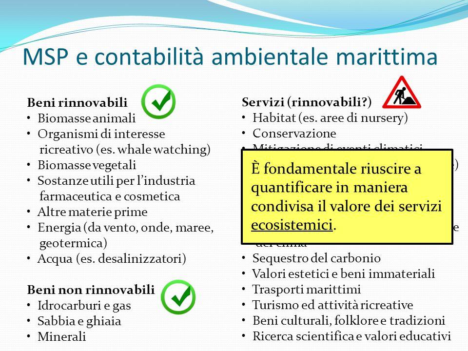 MSP e contabilità ambientale marittima
