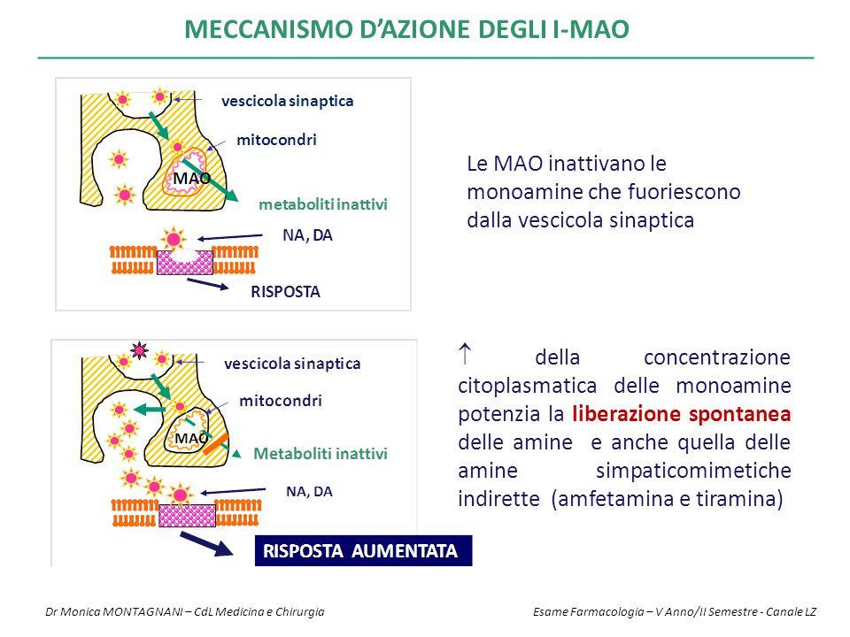 MECCANISMO D'AZIONE DEGLI I-MAO