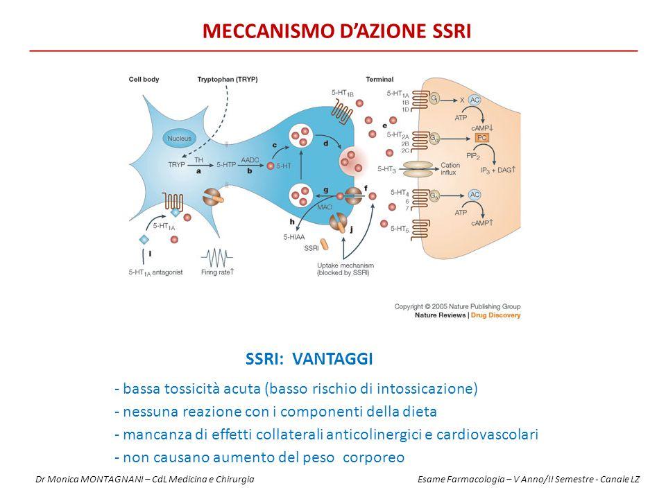 MECCANISMO D'AZIONE SSRI