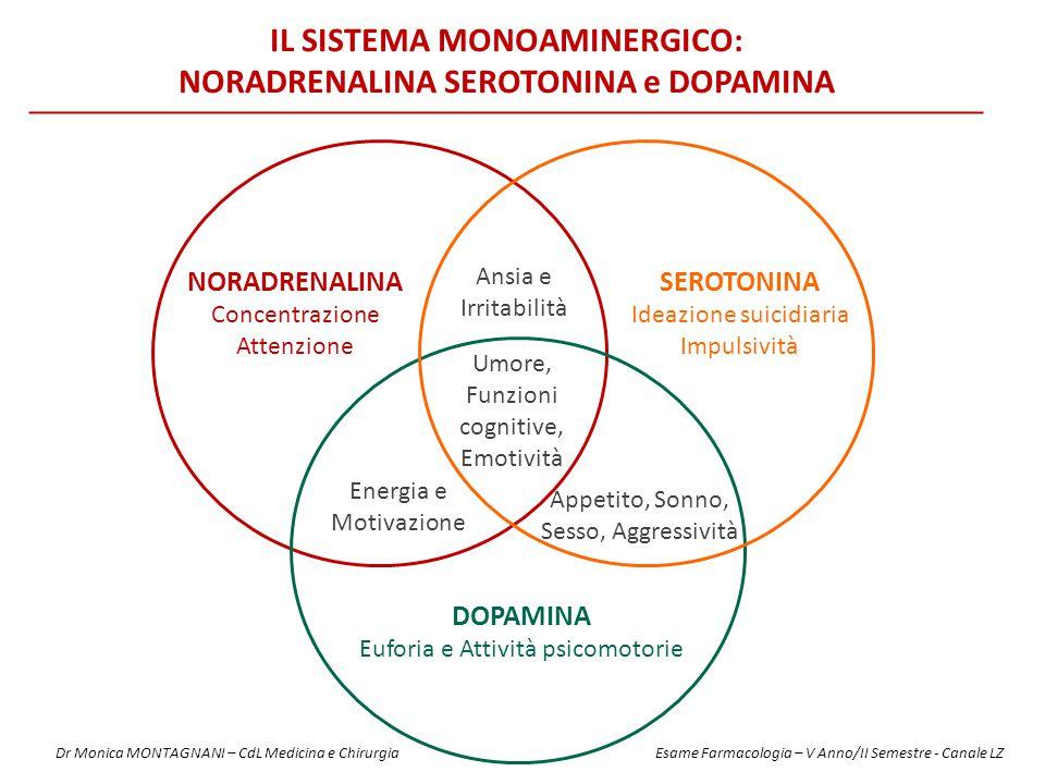 IL SISTEMA MONOAMINERGICO: NORADRENALINA SEROTONINA e DOPAMINA