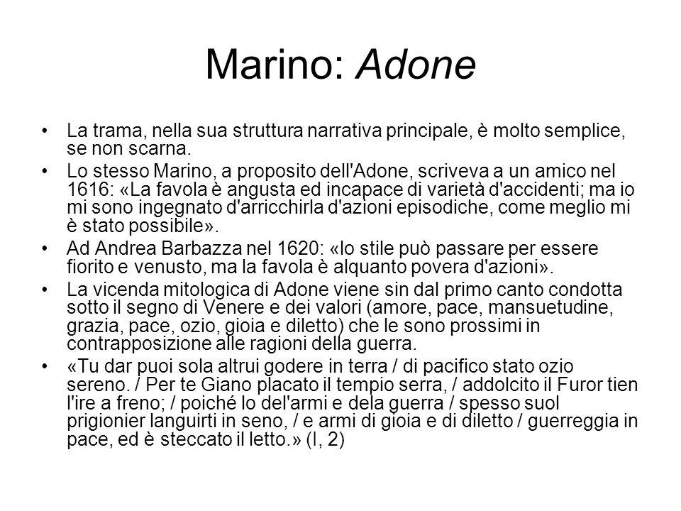 Marino: Adone La trama, nella sua struttura narrativa principale, è molto semplice, se non scarna.